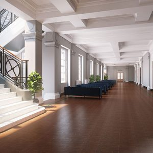 Interior Rendering, National Concert Hall
